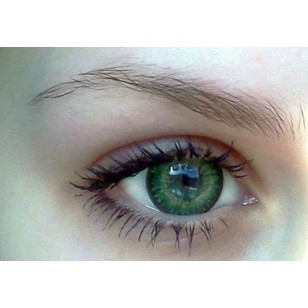 Gossip Girl Green