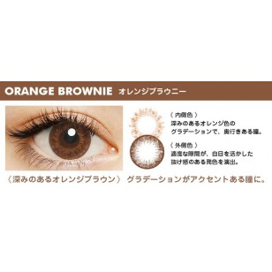 FLANMY Orange Brownie 10片裝