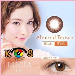 LUCIA 1Day Almond Brown
