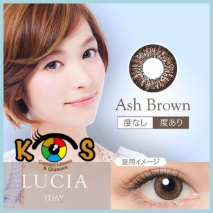 LUCIA 1Day Ash Brown