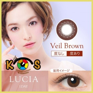 LUCIA 1Day Veil Brown