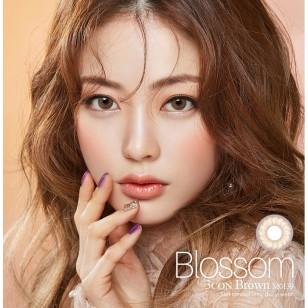 Blossom 3Con Brown(月拋)