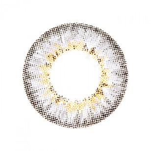 Olens Secriss Coral Gray 20片 (日拋)